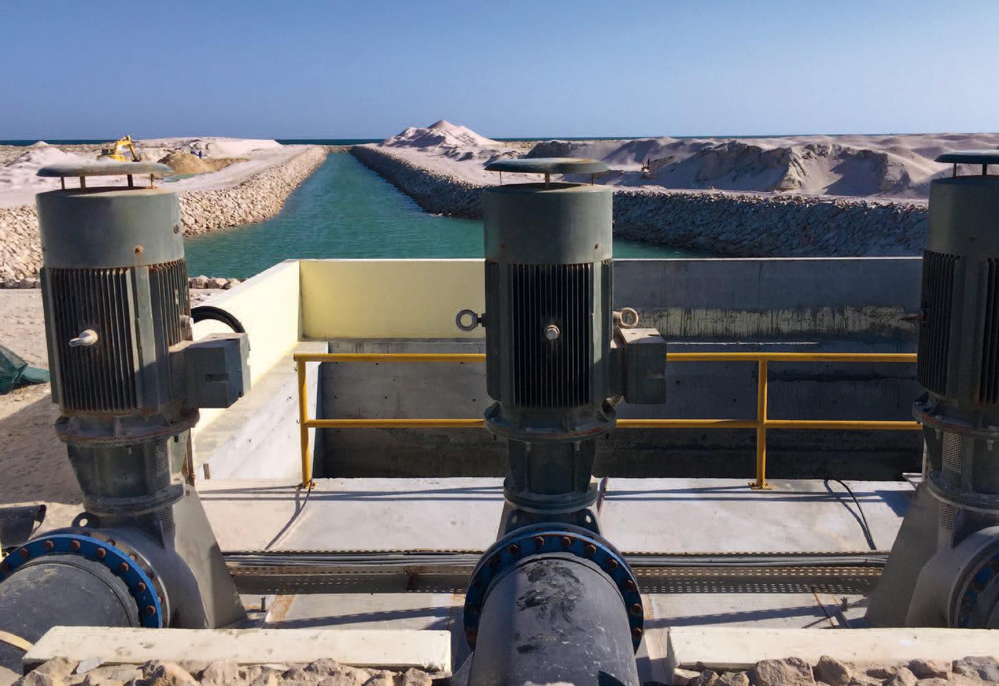 Oman pompe ad elica Veneroni